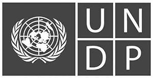 UNDP Project Supplier
